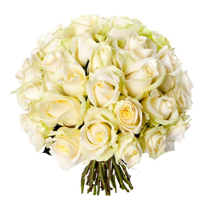 Bouquet 30 roses blanches livraison de roses france fleurs for Livraison rose
