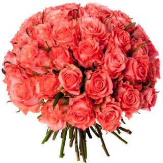 Bouquet 40 roses roses - livraison bouquet de 40 roses - France Fleurs