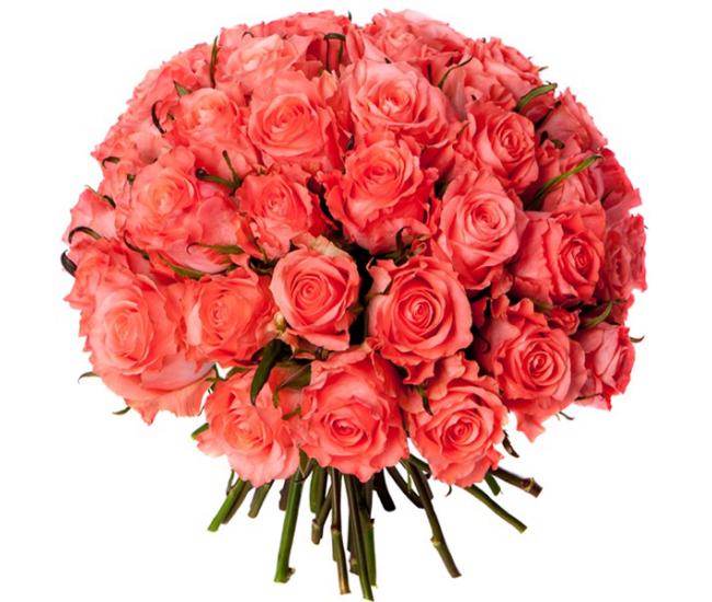 Bouquet 40 roses roses livraison bouquet de roses for Bouquets de roses