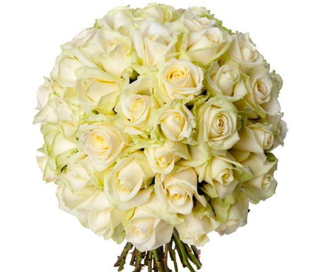 bouquet 50 roses blanches livraison bouquet de 50 roses france fleurs. Black Bedroom Furniture Sets. Home Design Ideas