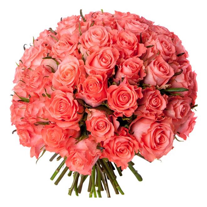 Bouquet 50 roses roses livraison bouquet de 50 roses for Envoyer des roses