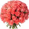 Bouquet 50 roses roses - livraison de roses roses - France Fleurs