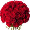 Bouquet 50 roses rouges - livraison roses rouges - France Fleurs