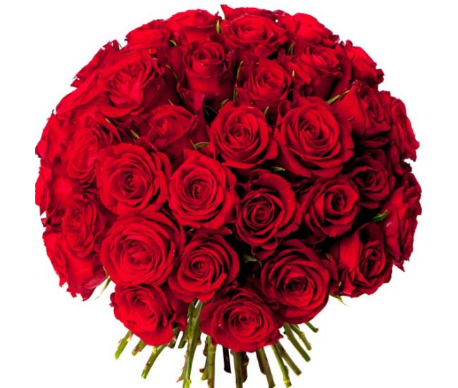 bouquet 50 roses rouges livraison bouquet de roses. Black Bedroom Furniture Sets. Home Design Ideas