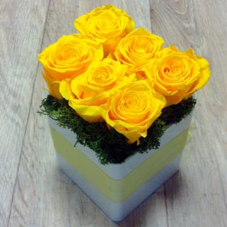 Le KuBe Jaune - composition roses stabilisées - France Fleurs