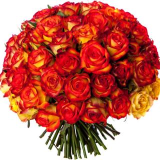 Bouquet 50 roses oranges - livraison de roses oranges - France Fleurs