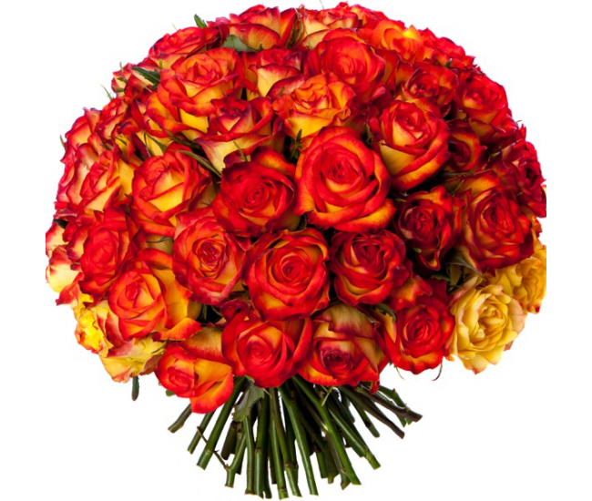 Bouquet 50 roses oranges livraison bouquet de roses for Bouquet de rose