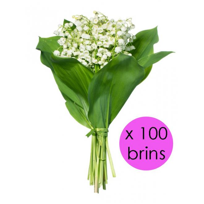 Vente de 100 brins de muguet achat de muguet en gros for Fleurs vente