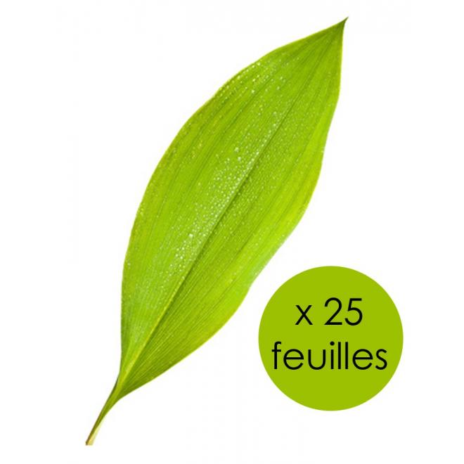 25 feuilles de muguet - achat muguet