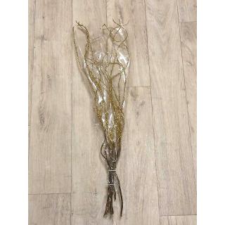 Salix doré (à la botte)