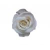 9 roses éternelles blanches