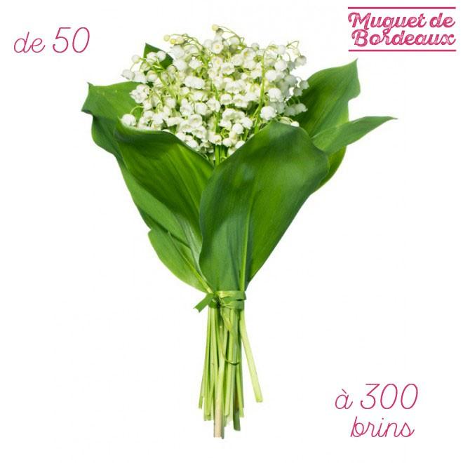 Vente de brins de muguet pas cher achat de muguet en for Envoyer des fleurs pas cher livraison gratuite