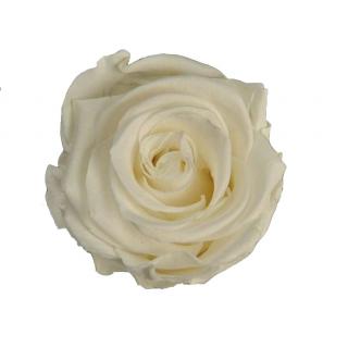 accessoires art floral vases pas chers mousse florale. Black Bedroom Furniture Sets. Home Design Ideas