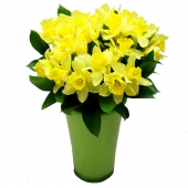 Bouquet de Jonquilles et son vase