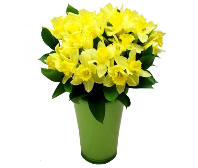 Bouquet de jonquilles bouquet de fleurs f te des grands for Bouquet de fleurs 123