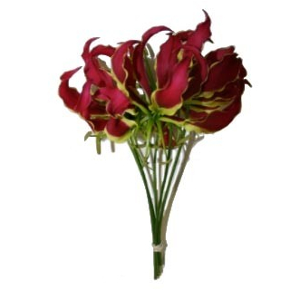 Gloriosa (5 tiges)