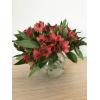 Alstroemeria rouge - Fleurs coupées