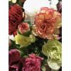 Mini oeillet varié (10 tiges) - Livraison fleurs