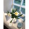 Tulipe rose - livraison fleurs pas chères - France Fleurs