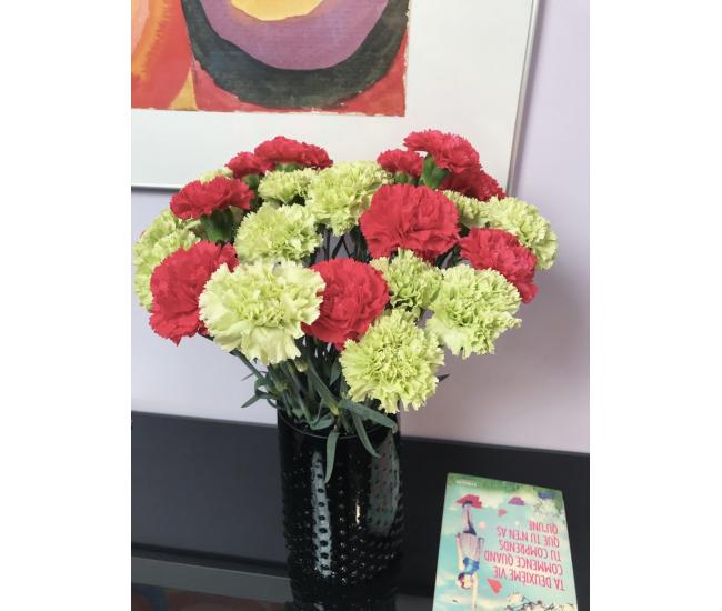 Oeillet sims vert livraison fleur coup e france fleurs for Livraison fleurs france