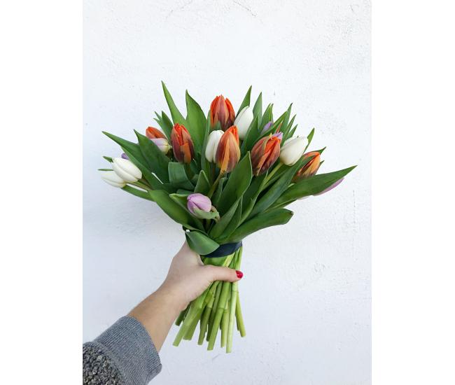 Bouquet de 30 à 50 tulipes variées - livraison en 24h
