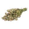 Nigelle séchée naturelle (100gr)