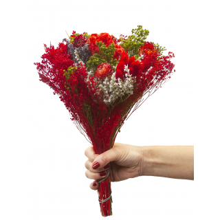 Bouquet sec rouge