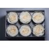 6 roses éternelles ivoire
