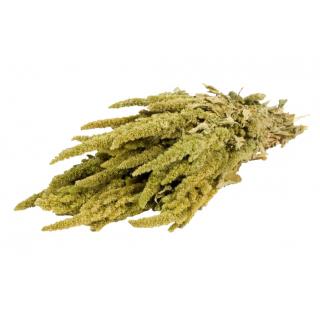 Amaranthe verte séchée (env 150g)