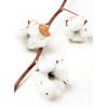 Branche de coton(6 boules)