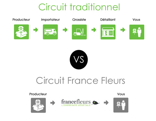 Circuit distribution France Fleurs, grossiste en fleurs ouvert aux particuliers